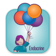 Physiology and Assessment: The Endocrine System